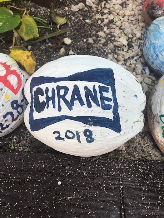 Chrane Coconut